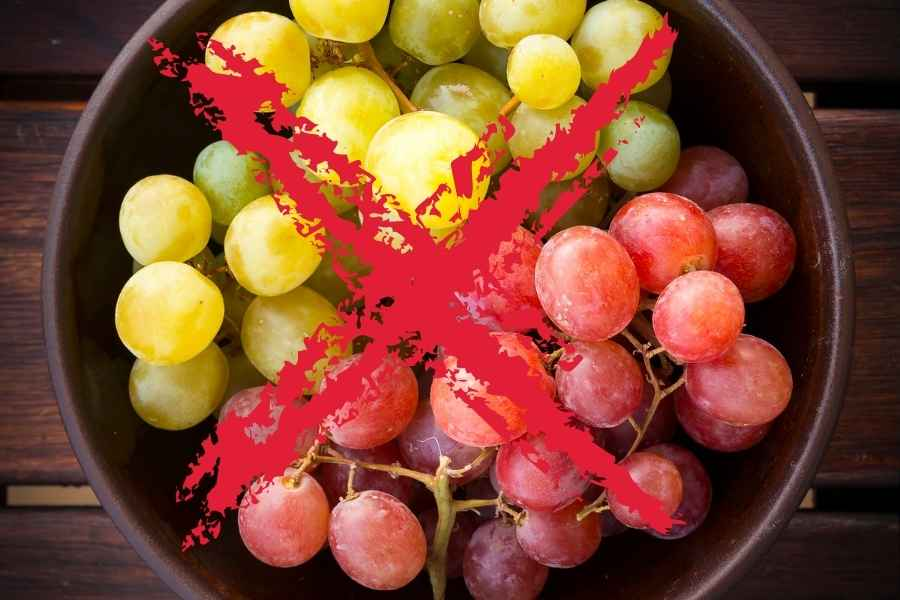 a bowl full of grapes with a red cross in front of them