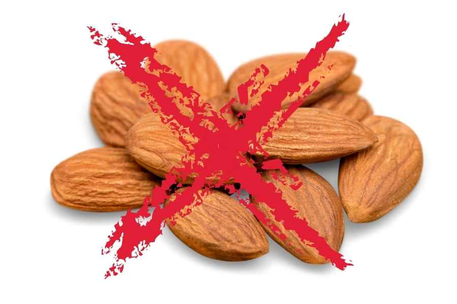 almonds on a white background crossed out with with a red cross