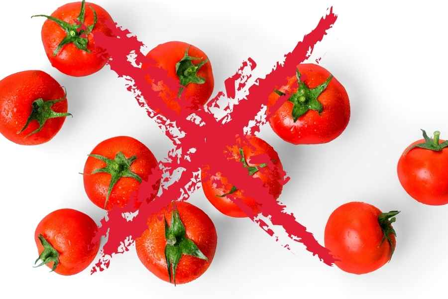 tomatoes on a white background crossed out with a red cross