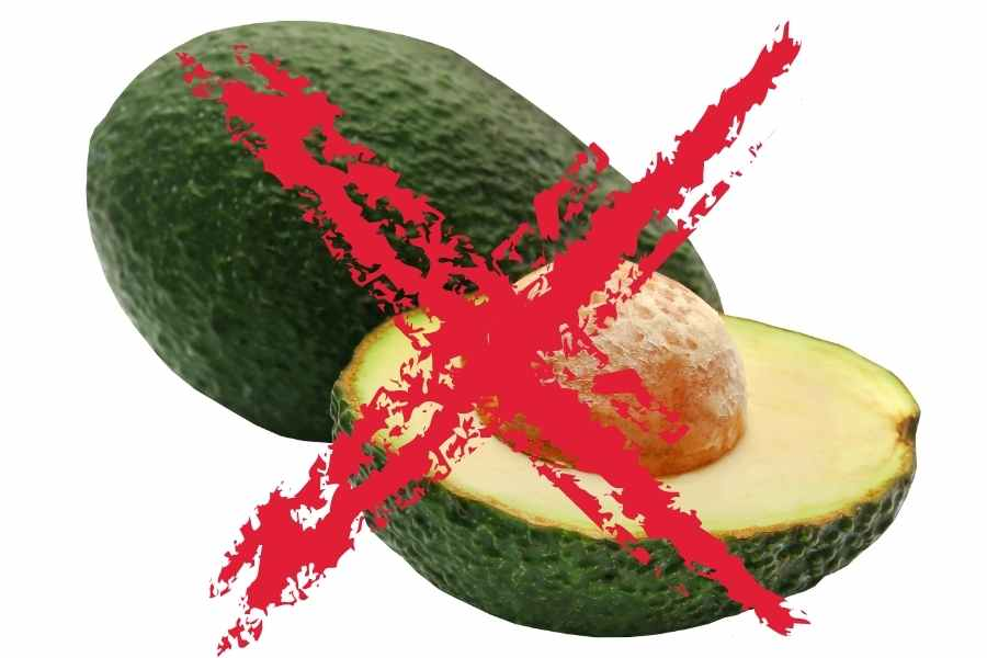a avocado cut in half with the pit inside crossed out by a red cross